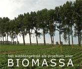 Omslagfoto advies Biomassa