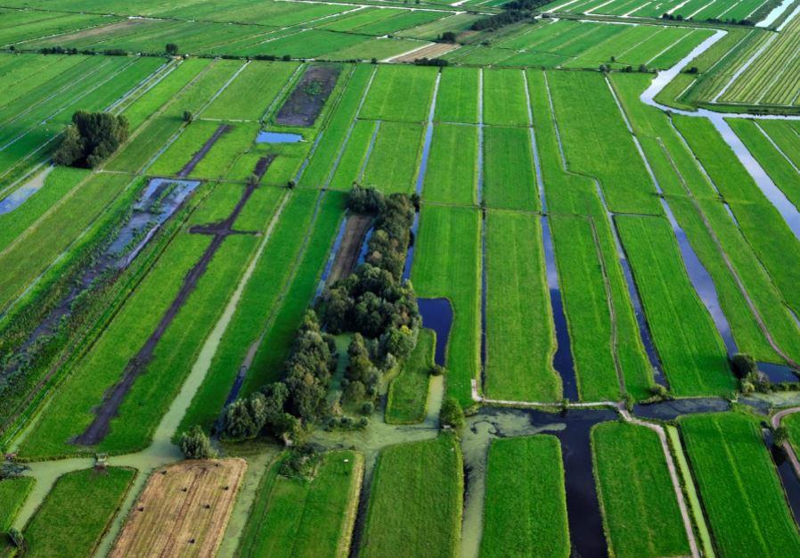 Veenweidegebied Stolwijk Krimpenerwaard