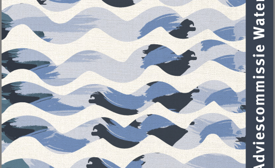 Illustratie van golven met de teskt Adviescommissie Water