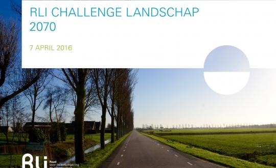 foto van polderlandschap