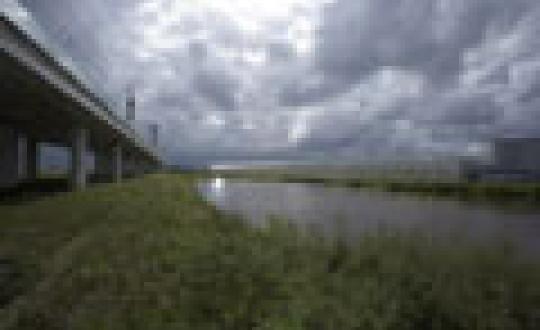 Versnipperd landschap - Spoor en kassen doorsnijden het landschap in Bleiswijk