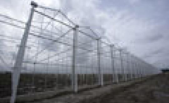 Economisch krachtig polderlandschap - De lage rechthoekige kavels en vergezichten van de polder dienden als uitgangspunt voor ontwerp voor de nieuwe groentekraamkamer (450 ha), agriport tussen Medemblik en Middenmeer