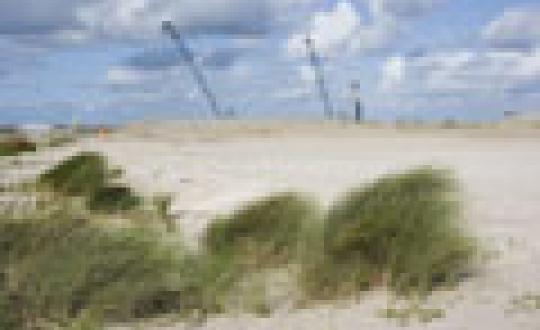 Landschap op de vlakte - Eerste Maasvlakte