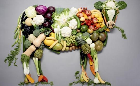 stier vormgegeven met groenten