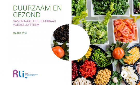 Cover met foto van diverse groenten en de titel Duurzaam en gezond